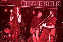 Fuzz Manta